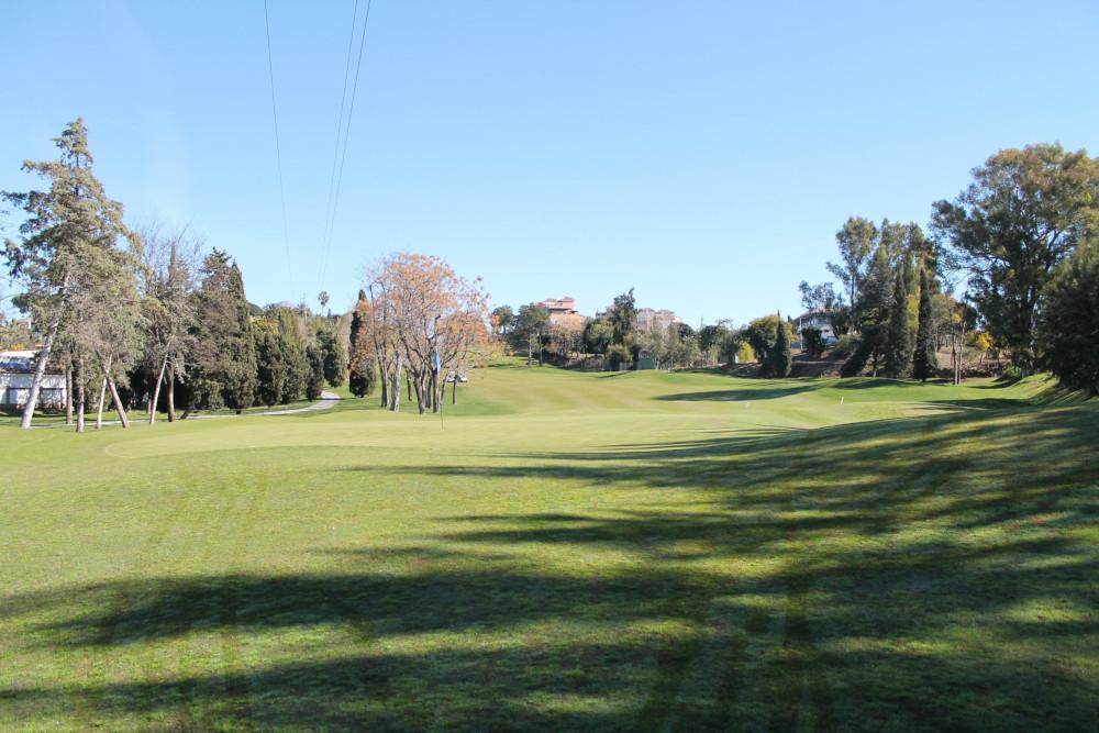 Guadalmina Course